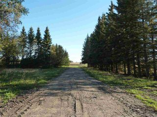 Photo 1: Hwy 827 Twp Road 610: Rural Thorhild County Rural Land/Vacant Lot for sale : MLS®# E4152236