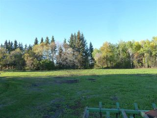 Photo 3: Hwy 827 Twp Road 610: Rural Thorhild County Rural Land/Vacant Lot for sale : MLS®# E4152236