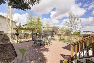 Photo 25: 141 EDGEBROOK Park NW in Calgary: Edgemont Detached for sale : MLS®# C4245778