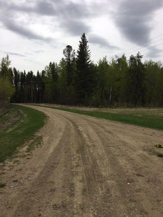 Photo 2: Range Road 34 and Twp Road 482: Rural Leduc County Rural Land/Vacant Lot for sale : MLS®# E4159945