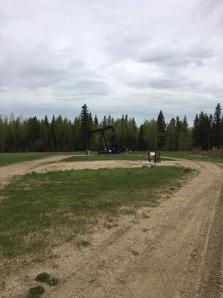 Photo 3: Range Road 34 and Twp Road 482: Rural Leduc County Rural Land/Vacant Lot for sale : MLS®# E4159945