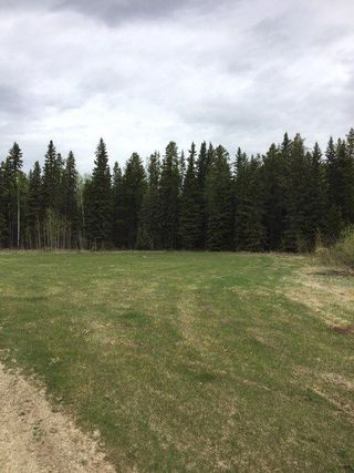 Photo 4: Range Road 34 and Twp Road 482: Rural Leduc County Rural Land/Vacant Lot for sale : MLS®# E4159945