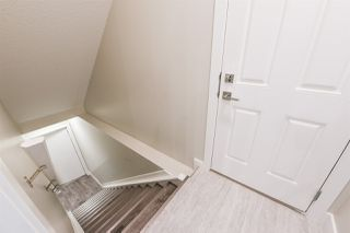 Photo 19:  in Edmonton: Zone 18 House for sale : MLS®# E4163507