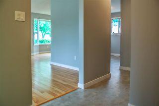 Photo 8: 15403 105 Avenue in Edmonton: Zone 21 House Half Duplex for sale : MLS®# E4172818