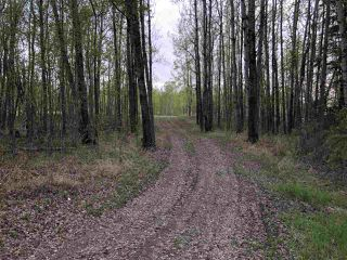 Photo 12: 633 Rge Rd 261 A: Rural Westlock County Rural Land/Vacant Lot for sale : MLS®# E4180273