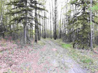 Photo 10: 633 Rge Rd 261 A: Rural Westlock County Rural Land/Vacant Lot for sale : MLS®# E4180273