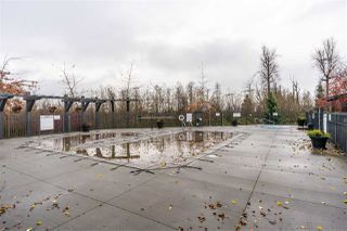 """Photo 24: 7 30989 WESTRIDGE Place in Abbotsford: Abbotsford West Townhouse for sale in """"Brighton"""" : MLS®# R2520326"""