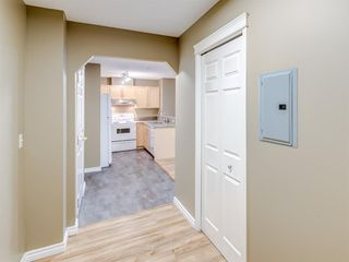 Photo 15: 4110 70 Panamount Drive NW in Calgary: Panorama Hills Apartment for sale : MLS®# A1056107