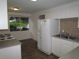 Photo 3: 34046 OLD YALE Road in ABBOTSFORD: Abbotsford East House for rent (Abbotsford)