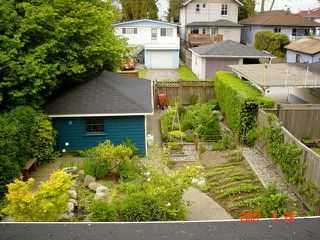 Photo 5: 50 40TH Ave in Vancouver East: Main Home for sale ()  : MLS®# V650149