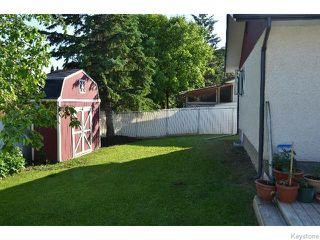 Photo 20: 11 Buckle Drive in WINNIPEG: Charleswood Residential for sale (South Winnipeg)  : MLS®# 1517415