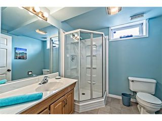 Photo 19: 551 PARKRIDGE Drive SE in Calgary: Parkland House for sale : MLS®# C4045891