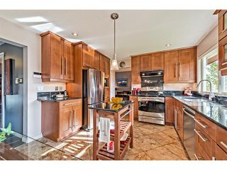 Photo 9: 551 PARKRIDGE Drive SE in Calgary: Parkland House for sale : MLS®# C4045891