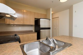"Photo 5: 211 3278 HEATHER Street in Vancouver: Cambie Condo for sale in ""HEATHERSTONE"" (Vancouver West)  : MLS®# R2030479"