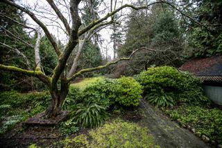 Photo 5: 4722 W 2ND Avenue in Vancouver: Point Grey House for sale (Vancouver West)  : MLS®# R2038215
