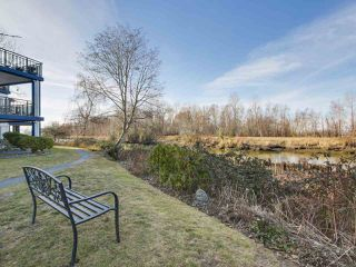 "Photo 15: 405 4955 RIVER Road in Delta: Neilsen Grove Condo for sale in ""SHOREWALK"" (Ladner)  : MLS®# R2137190"