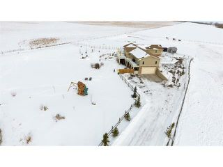 Photo 32: 48142 320 Avenue E: Rural Foothills M.D. House for sale : MLS®# C4098946