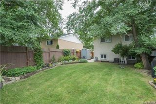 Photo 16: 337 Larche Crescent in Winnipeg: East Transcona Residential for sale (3M)  : MLS®# 1721126