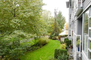 "Photo 14: 211 1880 E KENT AVENUE SOUTH in Vancouver: Fraserview VE Condo for sale in ""PILOT HOUSE"" (Vancouver East)  : MLS®# R2223956"