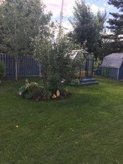 Photo 17: 10403 113 Avenue in Fort St. John: Fort St. John - City NW House for sale (Fort St. John (Zone 60))  : MLS®# R2227516