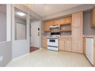 "Photo 4: 327 12101 80 Avenue in Surrey: Queen Mary Park Surrey Condo for sale in ""Surrey Town Manor"" : MLS®# R2258938"