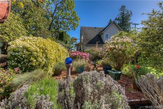 Photo 6: 517 Comerford Street in VICTORIA: Es Saxe Point Single Family Detached for sale (Esquimalt)  : MLS®# 391529