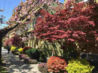 """Photo 19: 30 795 W 8TH Avenue in Vancouver: Fairview VW Townhouse for sale in """"Dover Pointe"""" (Vancouver West)  : MLS®# R2281073"""