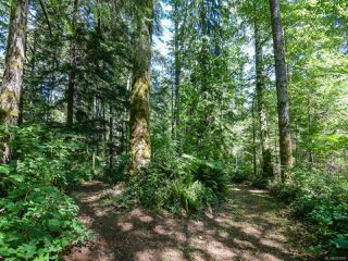 Photo 56: 3875 Dohm Rd in BLACK CREEK: CV Merville Black Creek House for sale (Comox Valley)  : MLS®# 791992