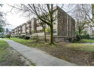 "Photo 13: 34 2444 WILSON Avenue in Port Coquitlam: Central Pt Coquitlam Condo for sale in ""ORCHARD VALLEY ESTATES"" : MLS®# R2312358"