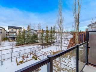 Photo 28: 138 ROYAL BIRCH Circle NW in Calgary: Royal Oak Detached for sale : MLS®# C4220192