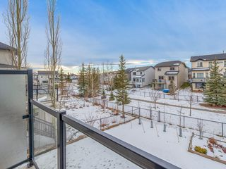 Photo 29: 138 ROYAL BIRCH Circle NW in Calgary: Royal Oak Detached for sale : MLS®# C4220192