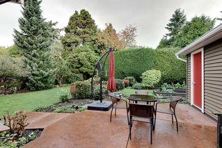 Photo 18: 15551 W OXENHAM Avenue: White Rock House for sale (South Surrey White Rock)  : MLS®# R2331238