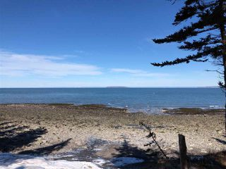 Photo 6: Lot 1 Shore Road in Victoria Harbour: 404-Kings County Vacant Land for sale (Annapolis Valley)  : MLS®# 201903257