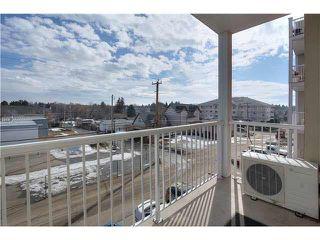 Photo 15: 313 5211 50 Street: Stony Plain Condo for sale : MLS®# E4145585