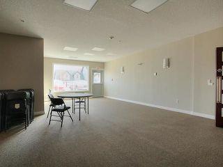 Photo 17: 313 5211 50 Street: Stony Plain Condo for sale : MLS®# E4145585