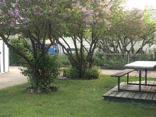 Photo 17: 4001 117 Avenue in Edmonton: Zone 23 House for sale : MLS®# E4147480