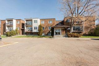 Photo 1: 204 11420 40 Avenue in Edmonton: Zone 16 Condo for sale : MLS®# E4152102