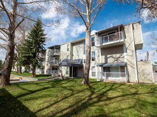 Photo 18: 310 2545 116 Street in Edmonton: Zone 16 Condo for sale : MLS®# E4154761