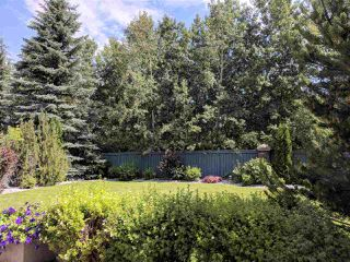 Photo 32: 251 WILSON Lane in Edmonton: Zone 22 House for sale : MLS®# E4196611