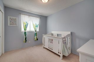 Photo 34: 167 DOUGLAS GLEN Manor SE in Calgary: Douglasdale/Glen Detached for sale : MLS®# A1026145