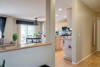 Photo 6: 167 DOUGLAS GLEN Manor SE in Calgary: Douglasdale/Glen Detached for sale : MLS®# A1026145