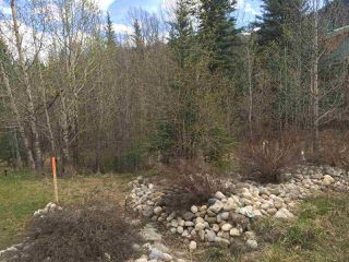 Main Photo: Lot 18A Folding Mountain Village: Rural Yellowhead Rural Land/Vacant Lot for sale : MLS®# E4216754