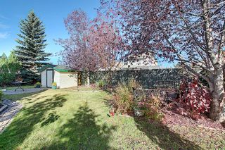 Photo 28: 260 Mt Aberdeen Circle SE in Calgary: McKenzie Lake Detached for sale : MLS®# A1041765