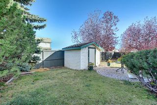 Photo 27: 260 Mt Aberdeen Circle SE in Calgary: McKenzie Lake Detached for sale : MLS®# A1041765