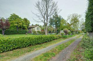 Photo 19: 1075 Roslyn Rd in VICTORIA: OB South Oak Bay Single Family Detached for sale (Oak Bay)  : MLS®# 728001