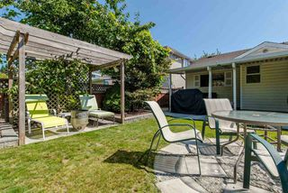 Photo 20: 8495 121A Street in Surrey: Queen Mary Park Surrey House for sale : MLS®# R2096268
