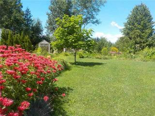 Photo 3: 44 Trent River S. Road in Kawartha Lakes: Rural Carden House (1 1/2 Storey) for sale : MLS®# X3729352