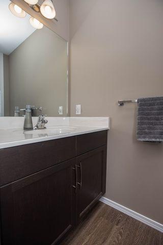 Photo 25: 411 Bridge Lake Drive in Winnipeg: Bridgwater Forest Residential for sale (1R)  : MLS®# 1706745