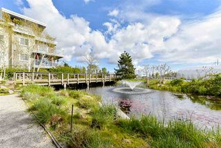 Photo 12: 229 5600 ANDREWS ROAD in Richmond: Steveston South Condo for sale : MLS®# R2162664