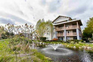 Photo 14: 229 5600 ANDREWS ROAD in Richmond: Steveston South Condo for sale : MLS®# R2162664